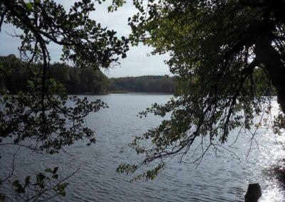 Lake Ringsjön